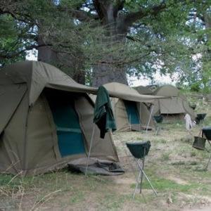 Tanzania Safari and Tours