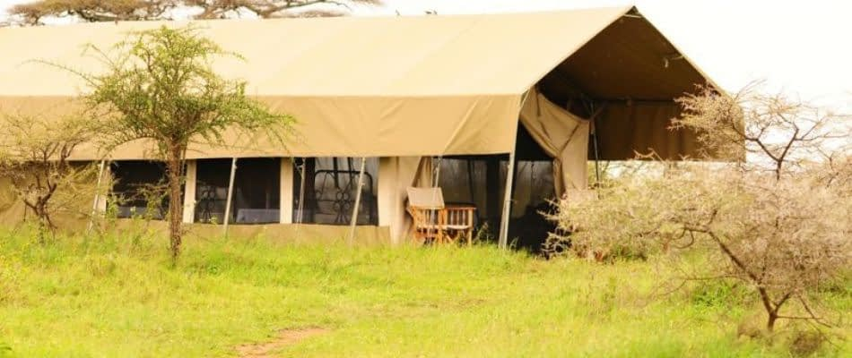 serengeti mawe tented camp
